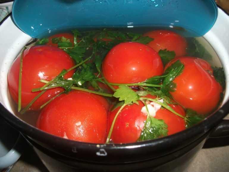 Как квасить зеленые помидоры в кастрюле