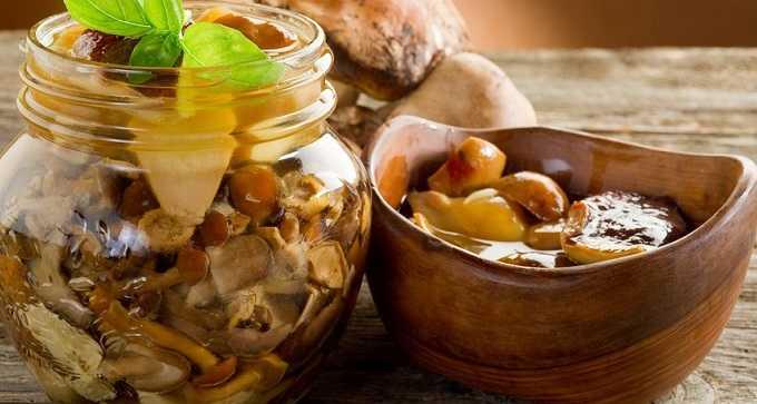 Соленые опята на зиму. Рецепты приготовления горячим и холодным способом