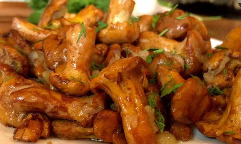 лисички грибы замороженные рецепты приготовления