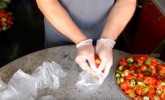 Как правильно хранить горький перец