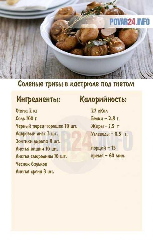 Рецепты и советы, можно ли солить грибы в пластмассовой посуде и через сколько можно есть