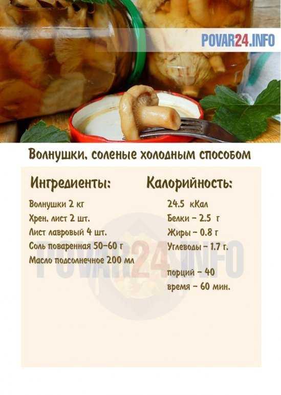 Как солить волнушки горячим и холодным способом в домашних условиях - вкусные и быстрые рецепты маринования на зиму