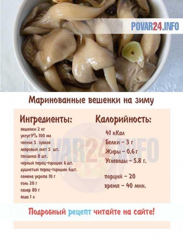 Вкусные рецепты — как приготовить грибы вешенки правильно