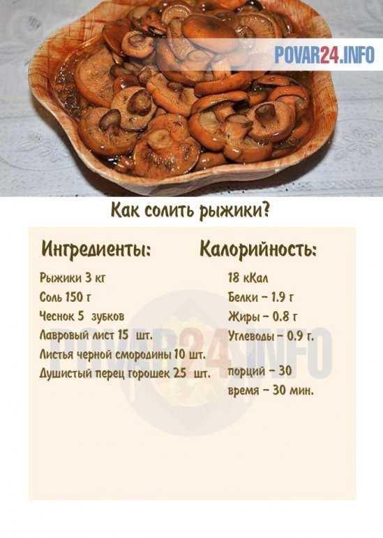 Как солить рыжики в домашних условиях - холодный и горячий способ приготовления в банках на зиму, вкусно и быстро