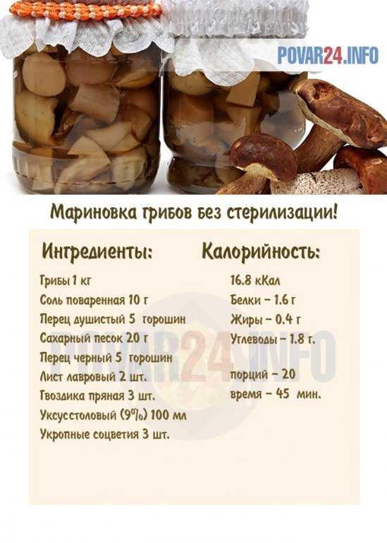 Рецепт маринованных грибов на зиму в домашних условиях — пошаговое приготовление без стерилизации в банках