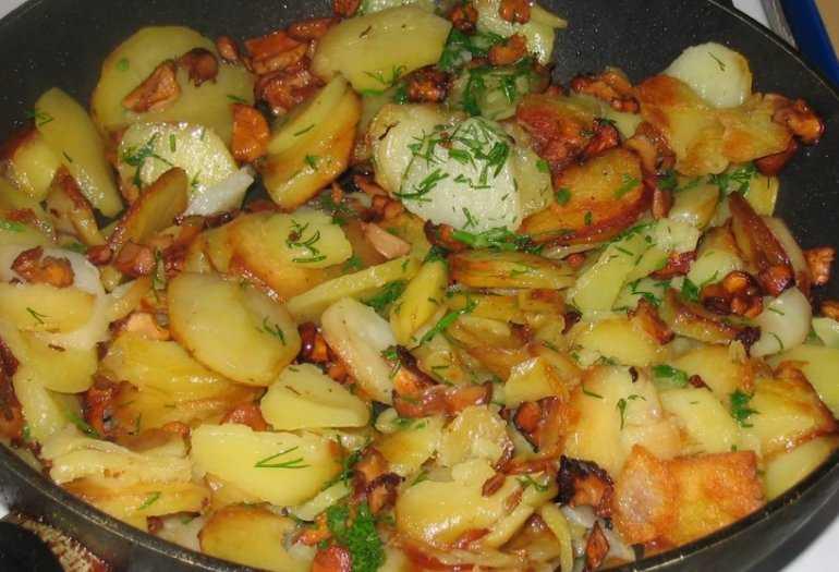 Жареные подберезовики с картошкой